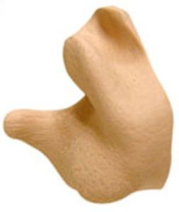 Ahead Custom Molded Earplugs Tan
